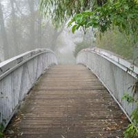 Construir puentes y eliminar los muros