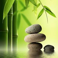 La hora de crear armonía