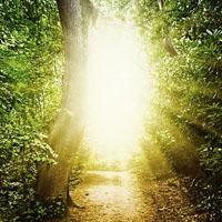 Re-descubrir la belleza y verdad acerca de Dios