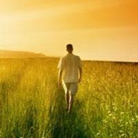 Creador de tu propio destino