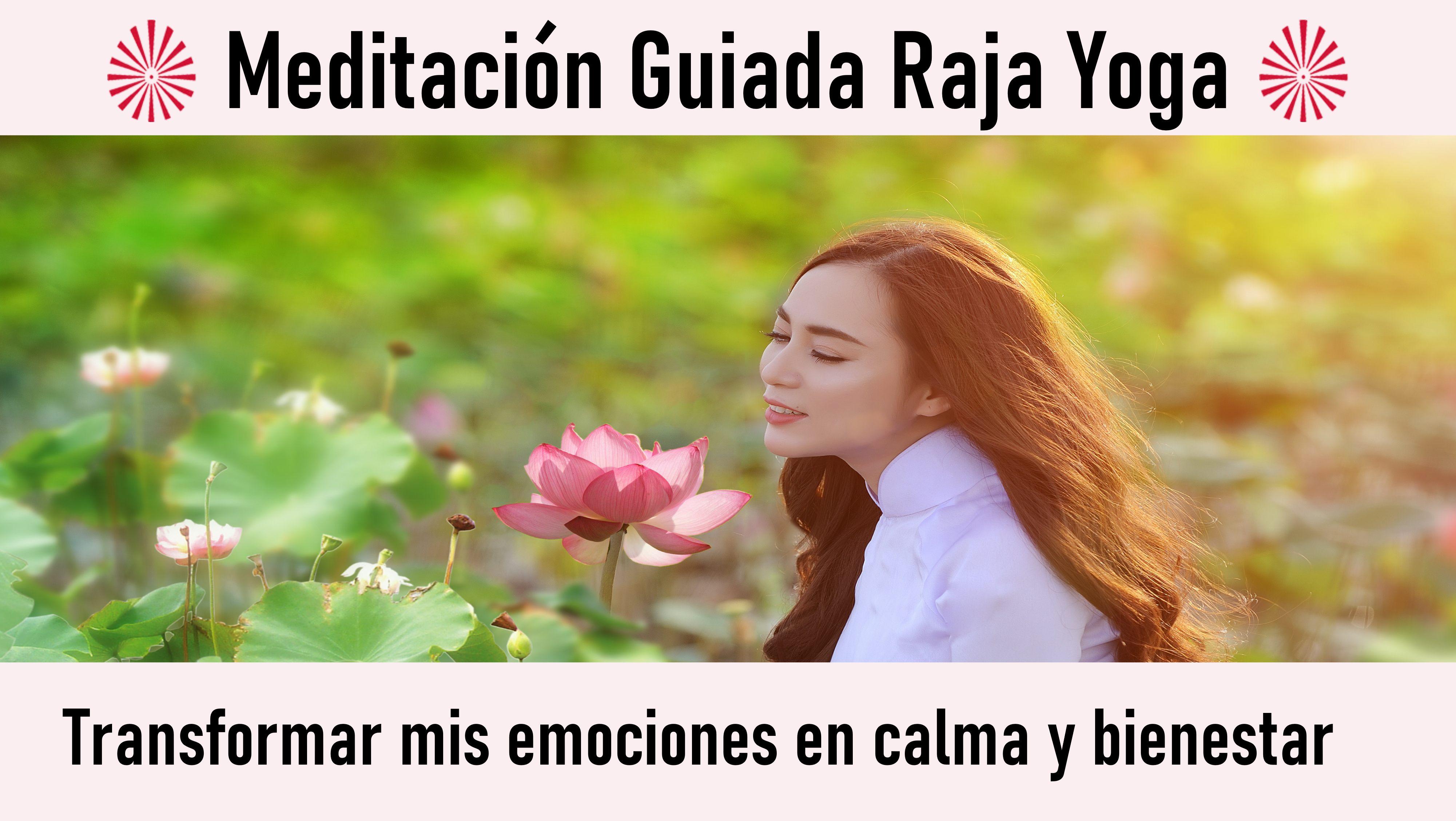 22 Septiembre 2020 Meditación guiada: Transformar mis emociones en calma y bienestar
