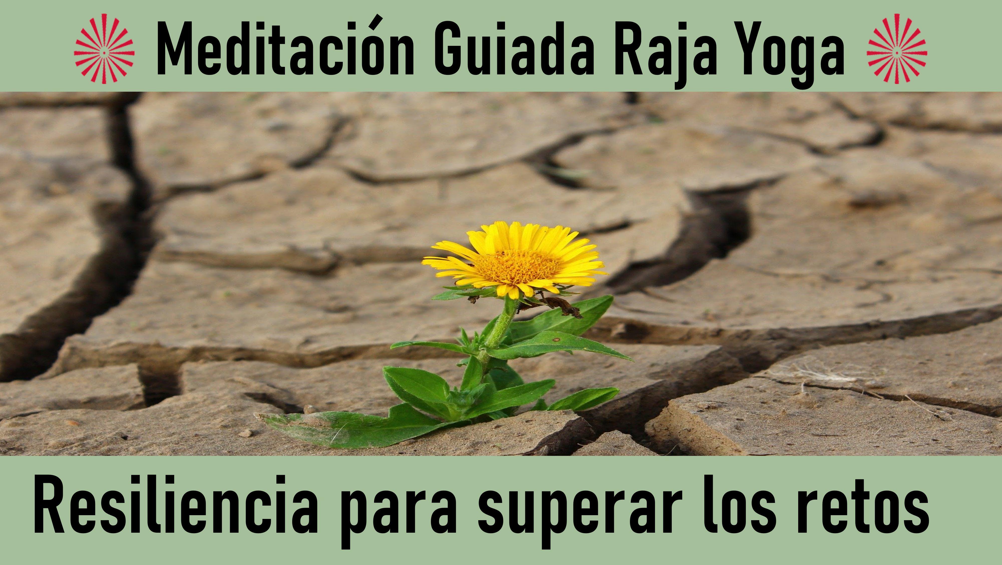 Meditación Raja Yoga: Resiliencia para superar los retos (4 Junio 2020) On-line desde Valencia
