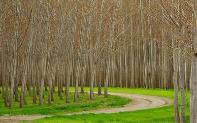 Crea el destino que quieres (4 Junio 2012) Valencia