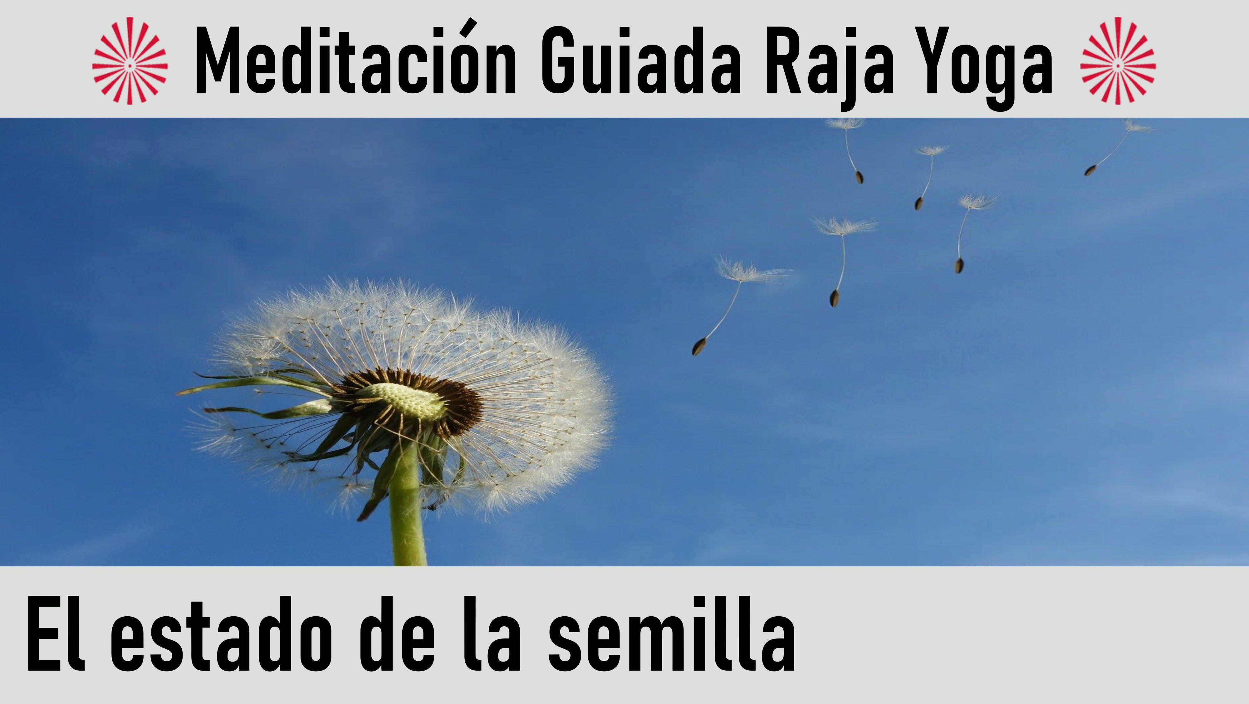 """Meditación Raja Yoga: """"El estado de la semilla"""" (19 Mayo 2020) On-line desde Madrid"""
