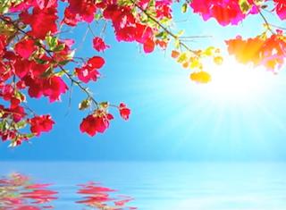 Ocean of Peace Meditation.mp4