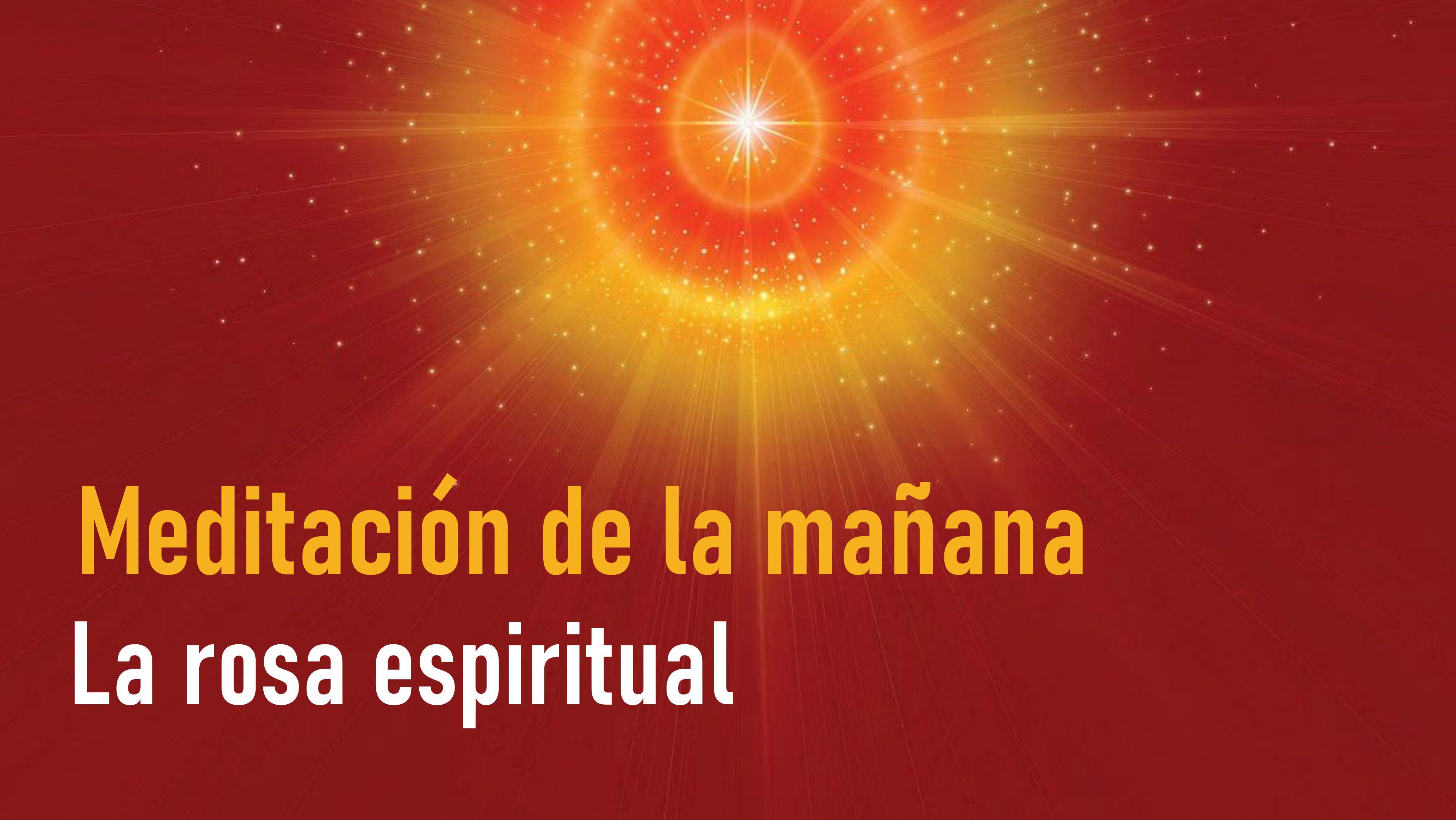 Meditación de la Mañana: La rosa espiritual  (23 Junio 2020)