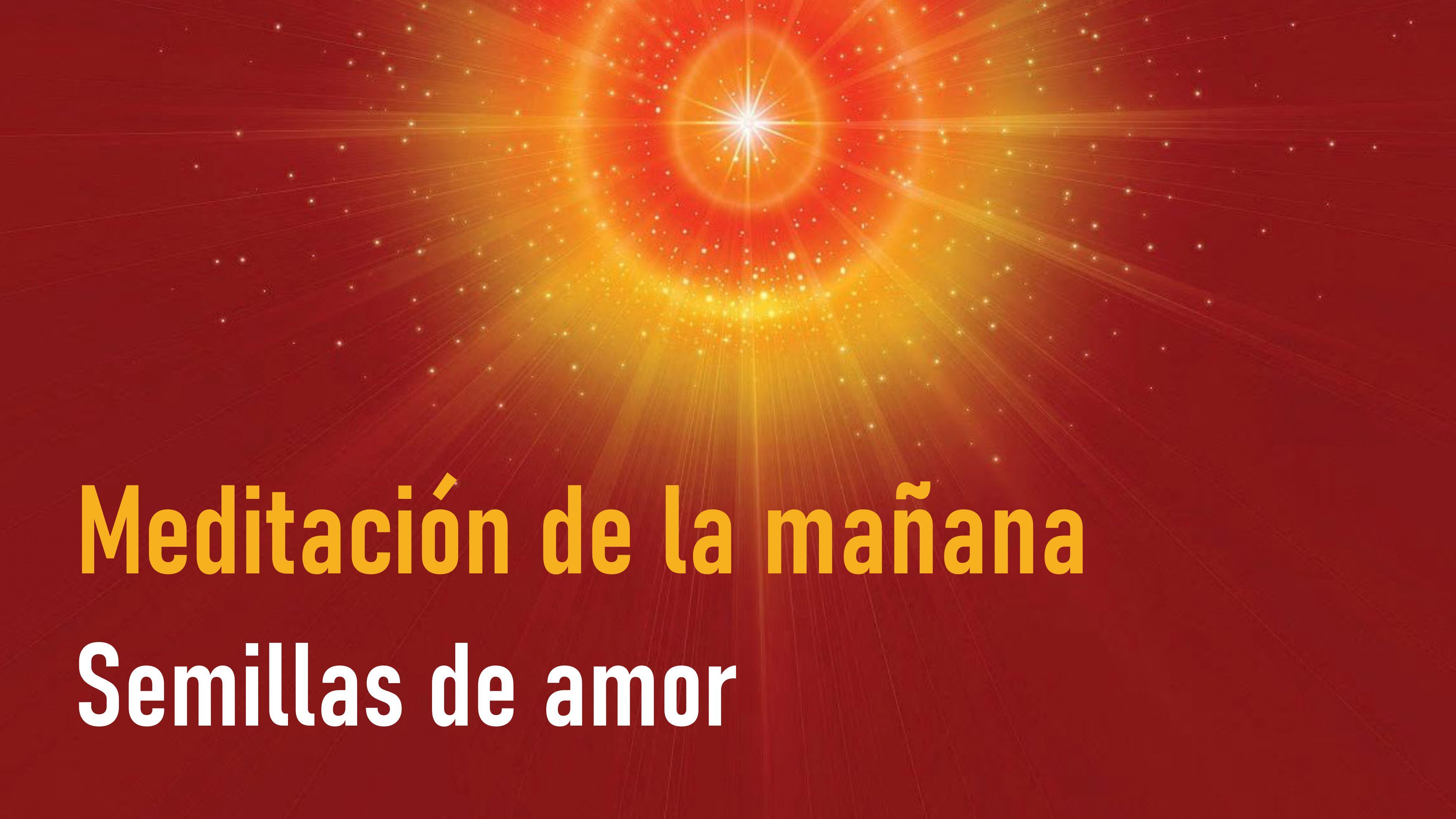 Meditación de la Mañana: Semillas de amor (1Junio 2020)