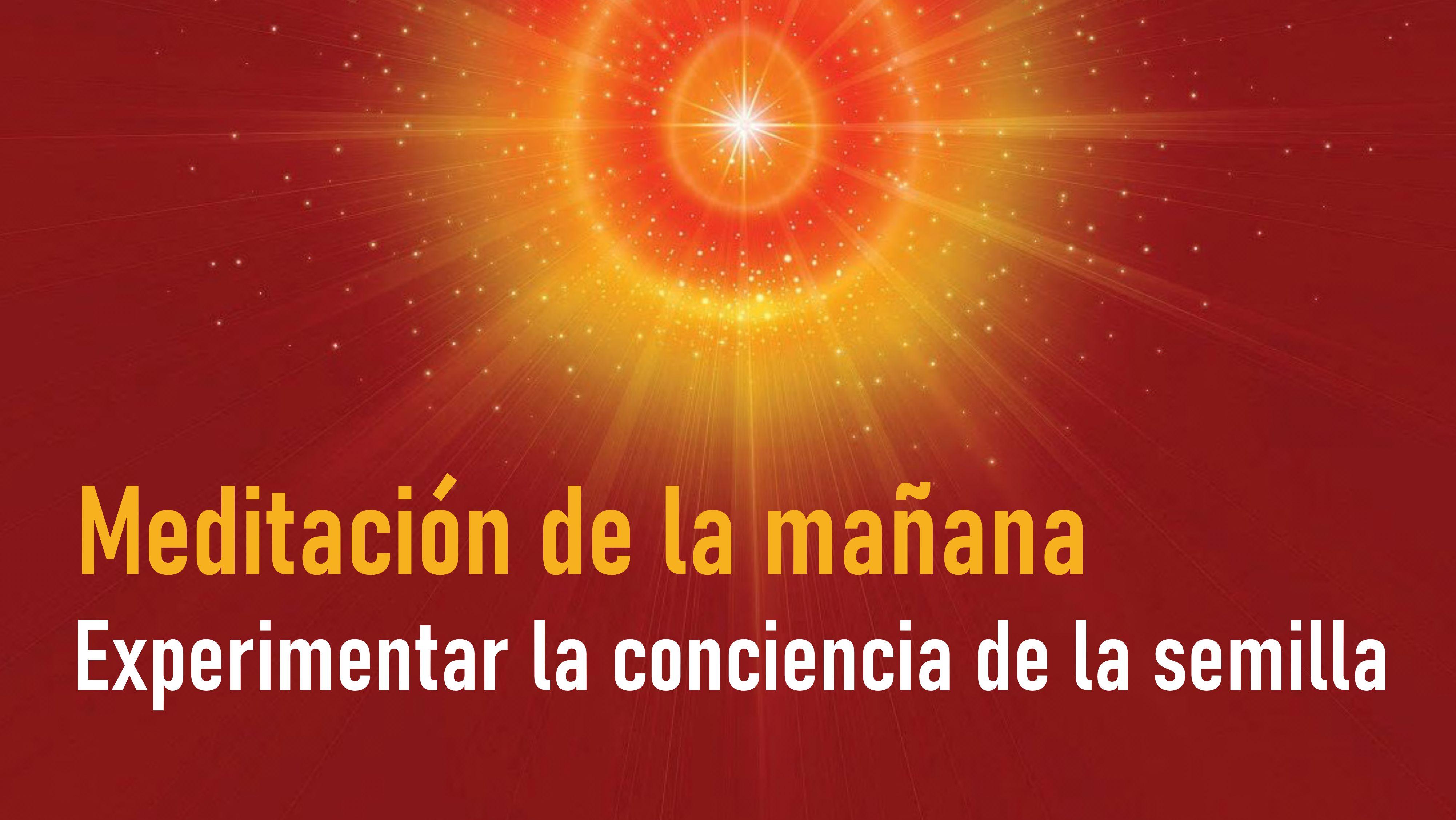 Meditación de la mañana: Experimentar la conciencia de la semilla (27 Julio 2020)