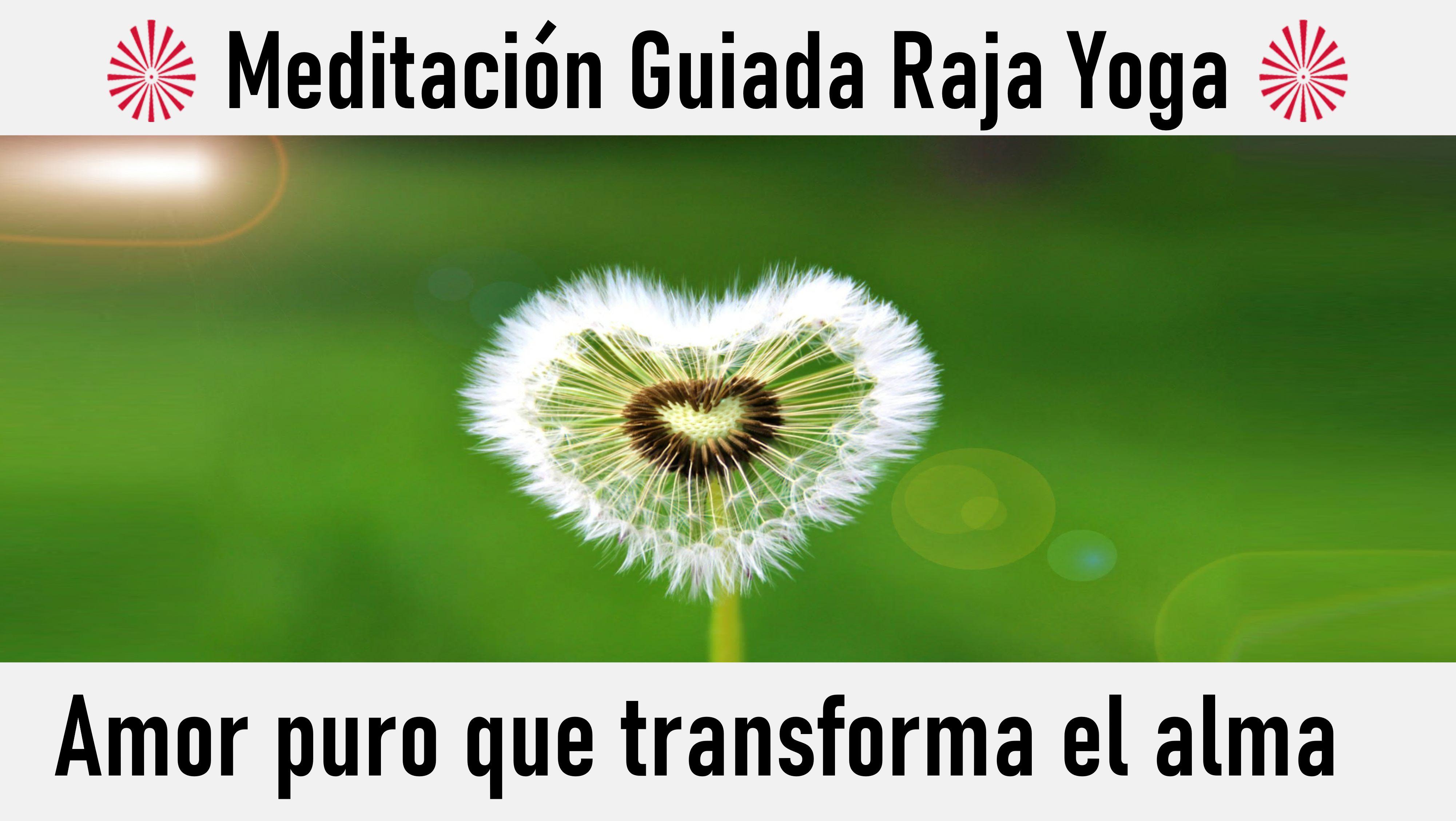 Meditación Raja Yoga: Amor puro que transforma el alma (14 Junio 2020) On-line desde Valencia
