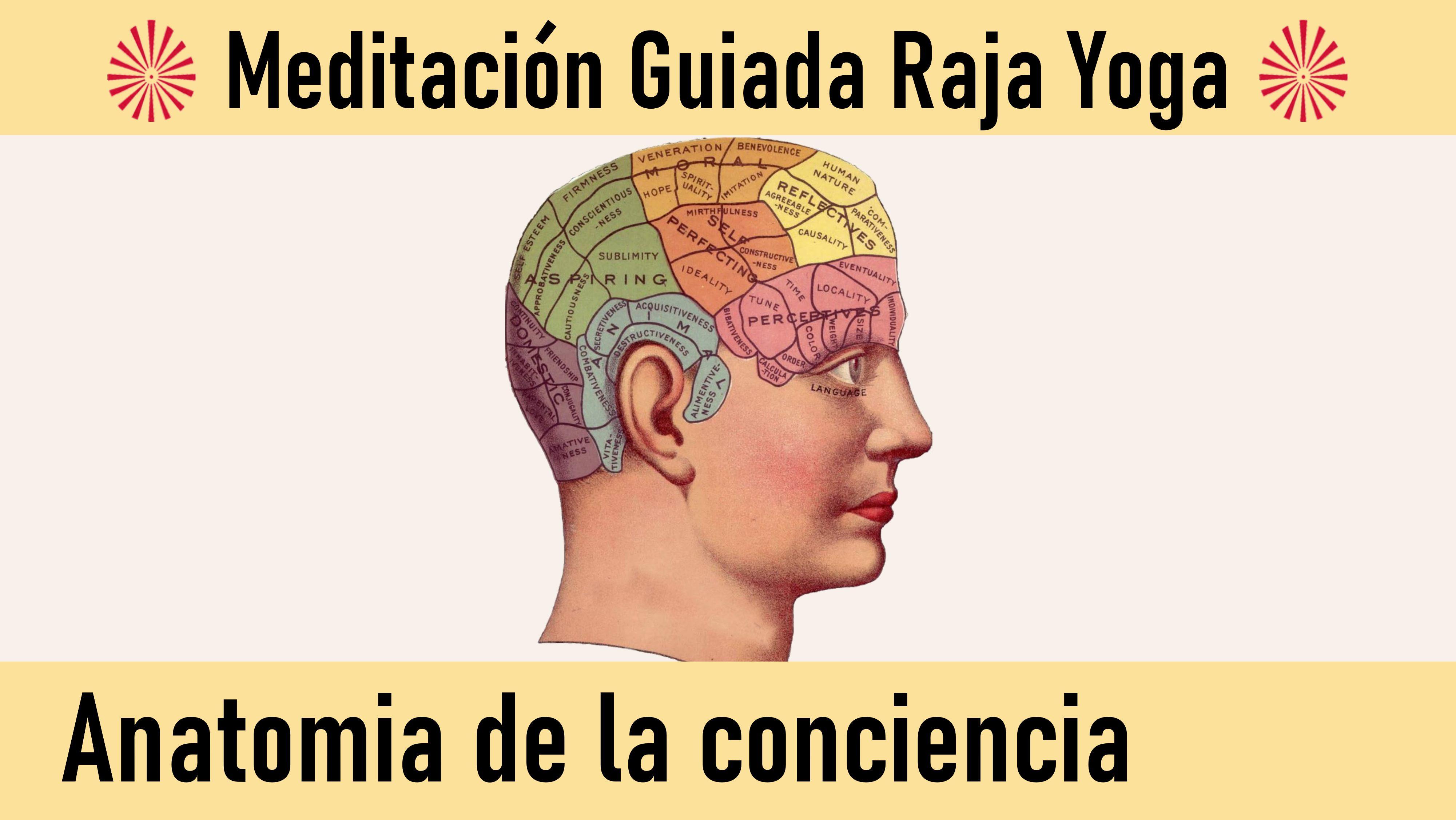 Meditación Raja Yoga: Anatomía de la conciencia (14 Julio 2020) On-line desde Mallorca