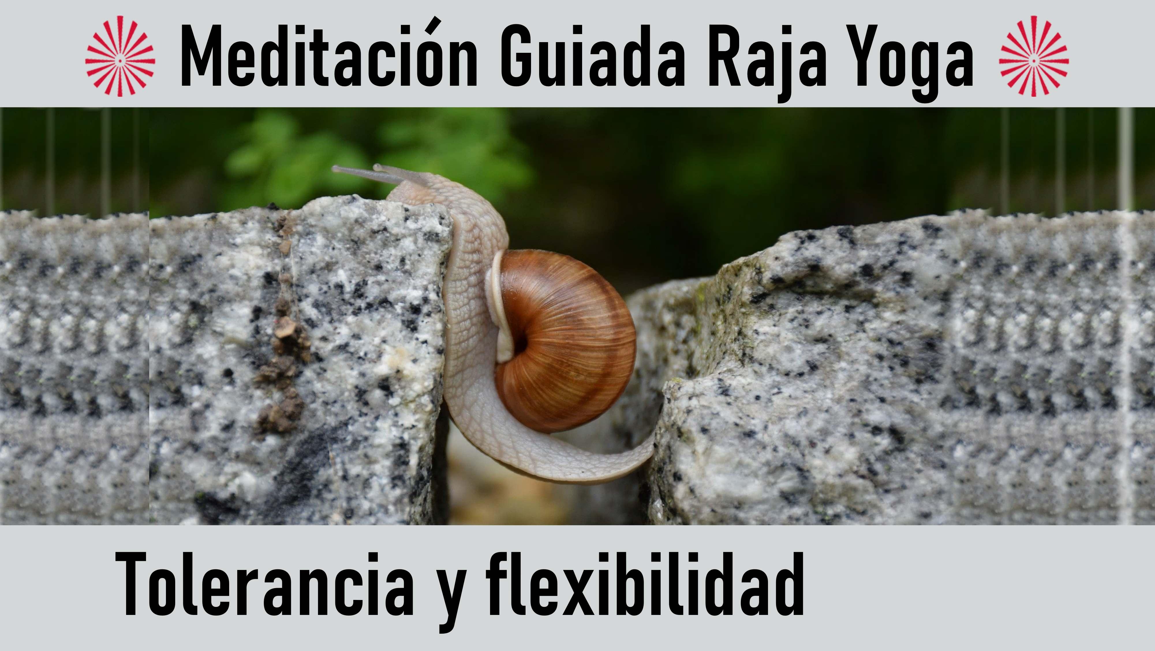 18 Agosto 2020 Meditación guiada: Tolerancia y flexibilidad