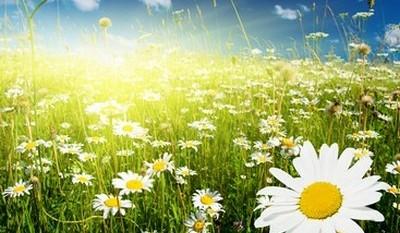 Autenticidad a través de la espiritualidad (17 Septiembre 2015) Valencia