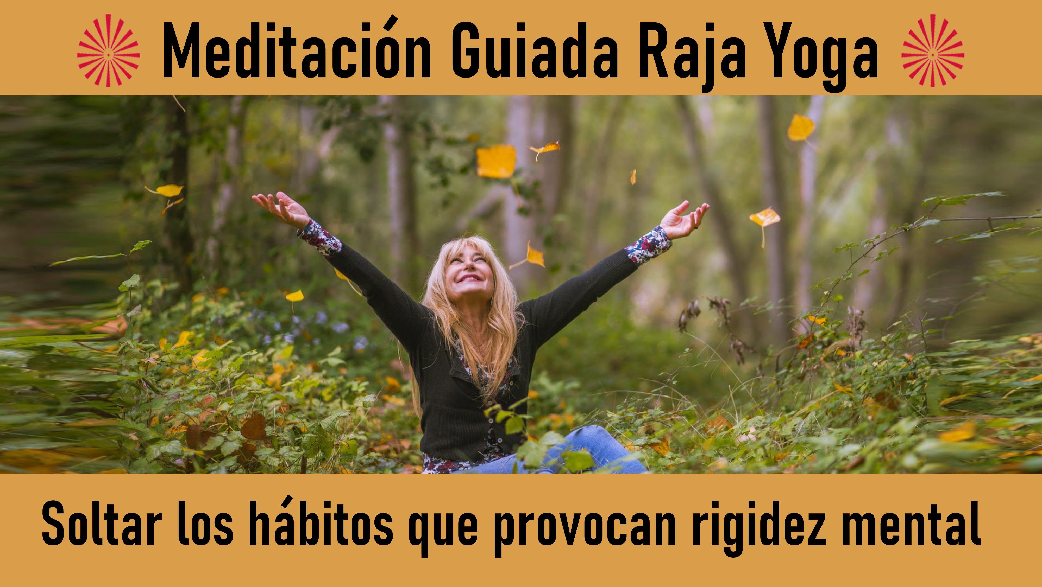 Meditación Raja Yoga: Soltar los hábitos que provocan rigidez mental (10 Julio 2020) On-line desde Sevilla